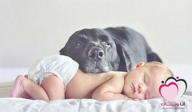 الاشياء الاساسية التي يحتاجها الرضيع بعد الولادة