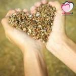 الحاجات العاطفية للزوج و الزوجه