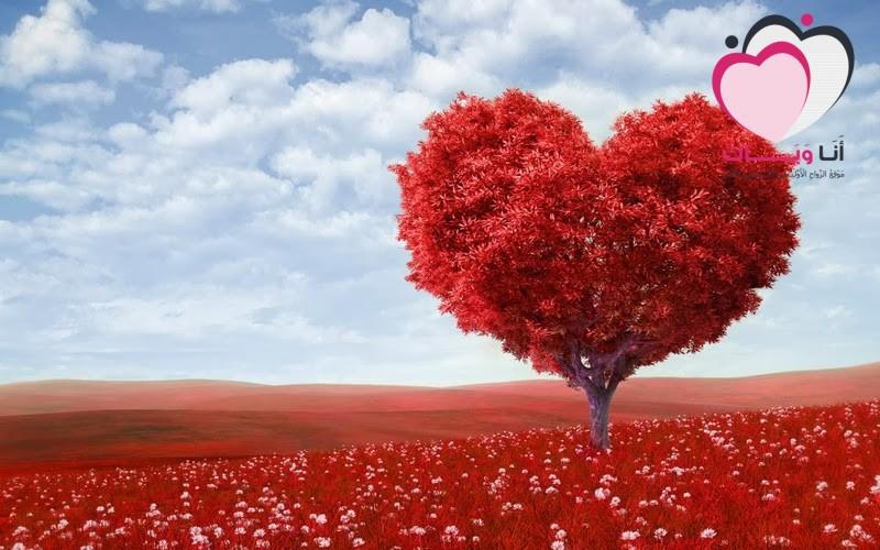 10 أساطير وراء يوم عيد الحب
